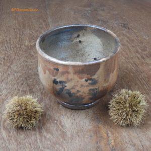 chawan s kapradinou v shinu