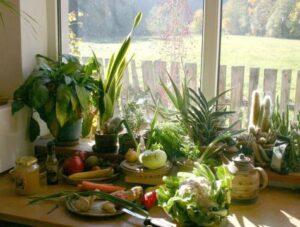 Keramická – Zahrada na parapetu